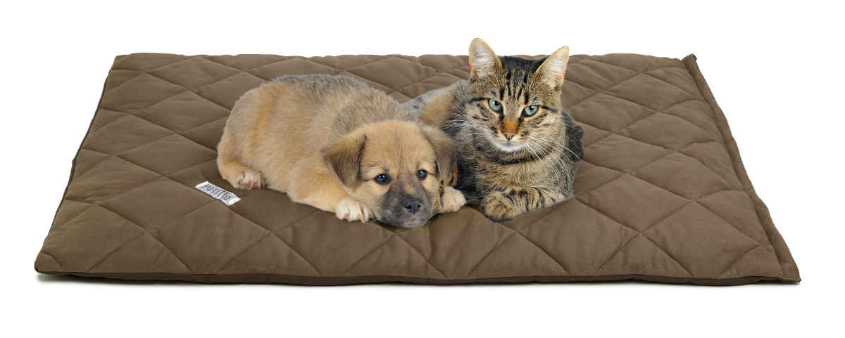 dog and cat bedding